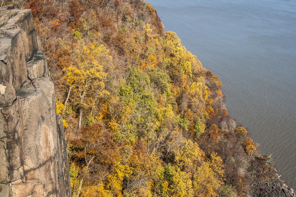 A picture containing outdoor, tree, nature, cliff  Description automatically generated